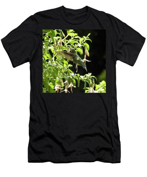 Hummingbird Feeding Men's T-Shirt (Athletic Fit)
