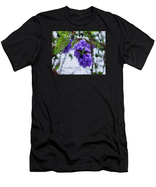 Hummingbird In A Jacaranda Tree Men's T-Shirt (Athletic Fit)