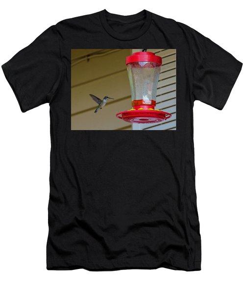 Hummingbird In Flight Men's T-Shirt (Athletic Fit)