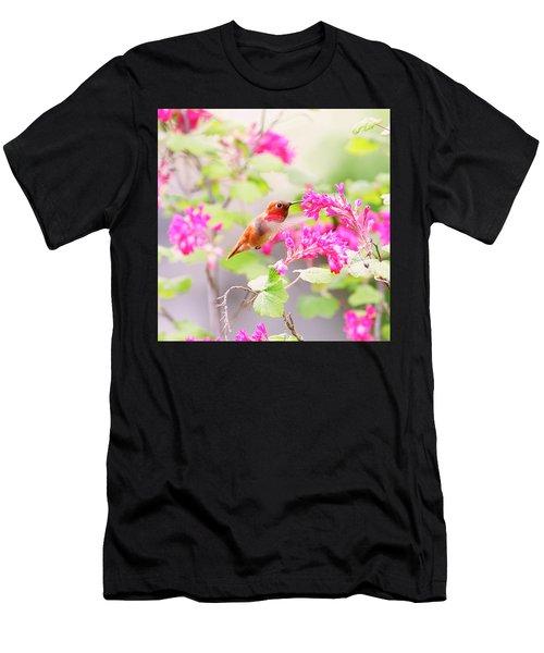 Hummingbird In Spring Men's T-Shirt (Athletic Fit)