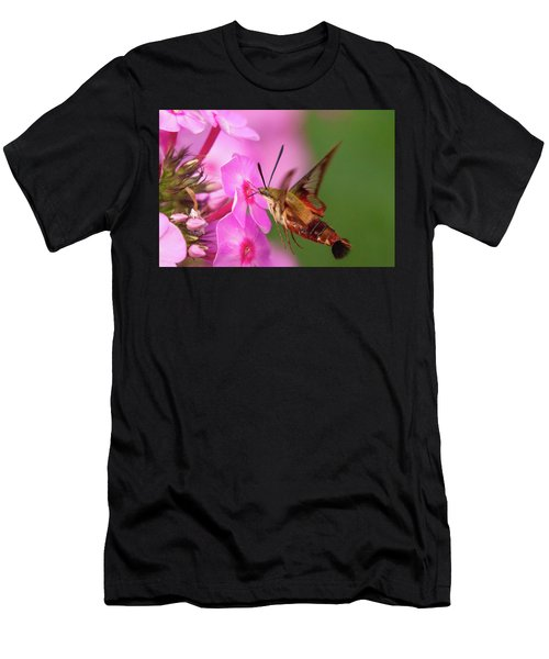 Hummingbird Moth Feeding 1 Men's T-Shirt (Athletic Fit)