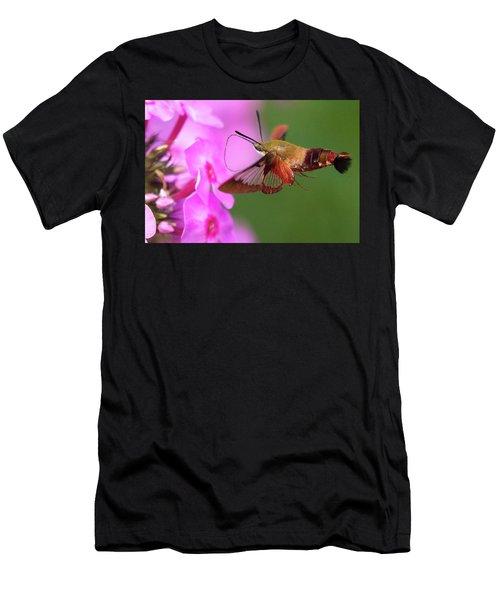 Hummingbird Moth Feeding 2 Men's T-Shirt (Athletic Fit)