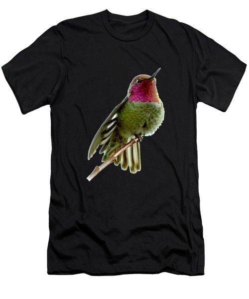 Hummingbird Portrait T1 Men's T-Shirt (Athletic Fit)