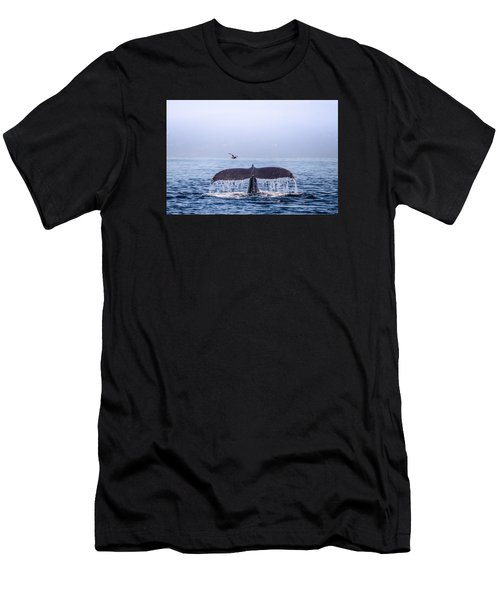 Humpback Whale Flukes Men's T-Shirt (Athletic Fit)