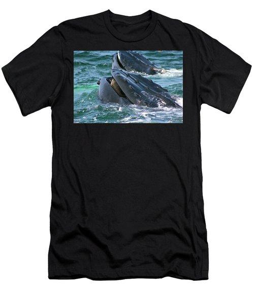 Humpback Whale Mouth Men's T-Shirt (Athletic Fit)