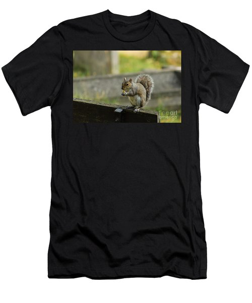 Hungry Squirrel Men's T-Shirt (Athletic Fit)