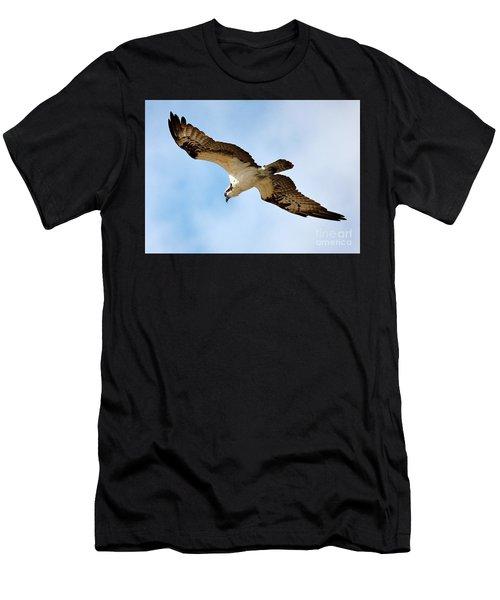 Hunter Osprey Men's T-Shirt (Athletic Fit)