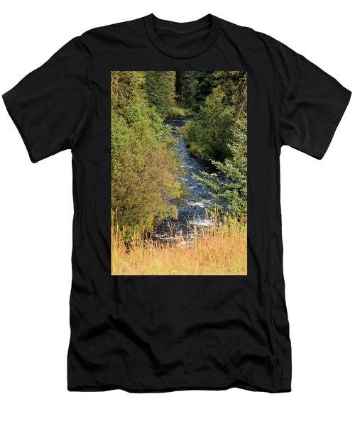 Hyalite Creek Overlook Men's T-Shirt (Athletic Fit)