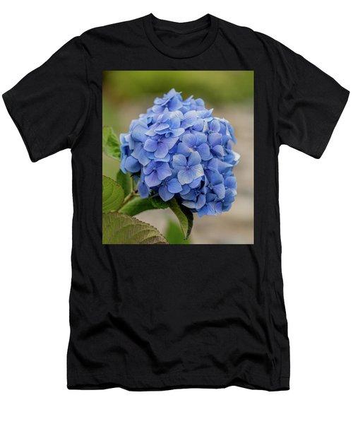 #hydrangea In Blue Men's T-Shirt (Athletic Fit)