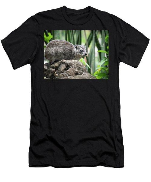 Hyrax Men's T-Shirt (Athletic Fit)