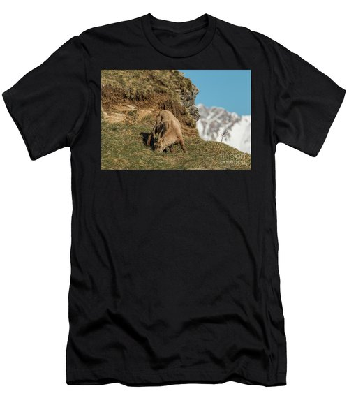 Ibex On The Mountains Men's T-Shirt (Athletic Fit)
