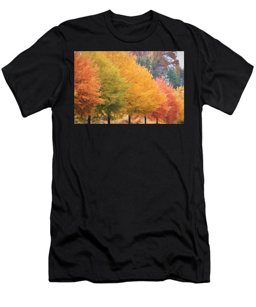 October Trees Men's T-Shirt (Athletic Fit)