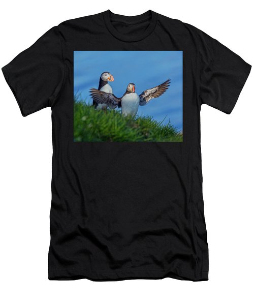 Iceland Puffin Paradise Men's T-Shirt (Athletic Fit)