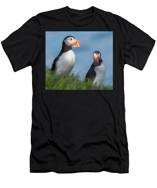 Iceland Puffins  Men's T-Shirt (Athletic Fit)
