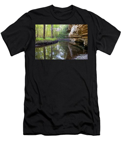 Illinois Canyon In Spring Men's T-Shirt (Slim Fit)