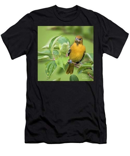 Immature Baltimore Oriole  Men's T-Shirt (Athletic Fit)