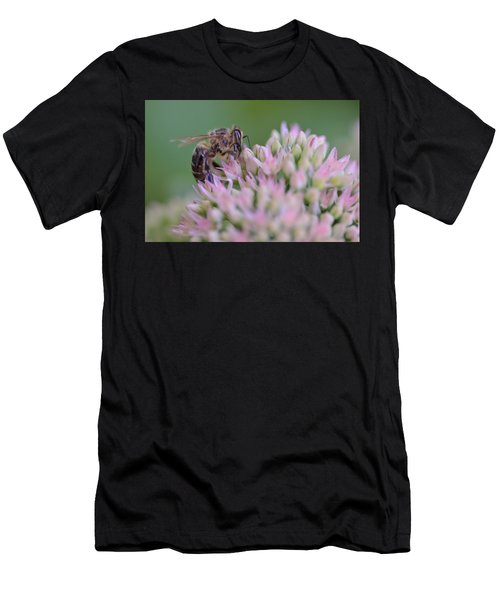 In Search Of Nectar Men's T-Shirt (Athletic Fit)