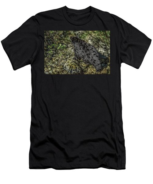 In The Shadows Black Bear Men's T-Shirt (Athletic Fit)