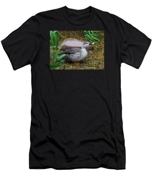 Indian Spot-billed Duck Men's T-Shirt (Athletic Fit)