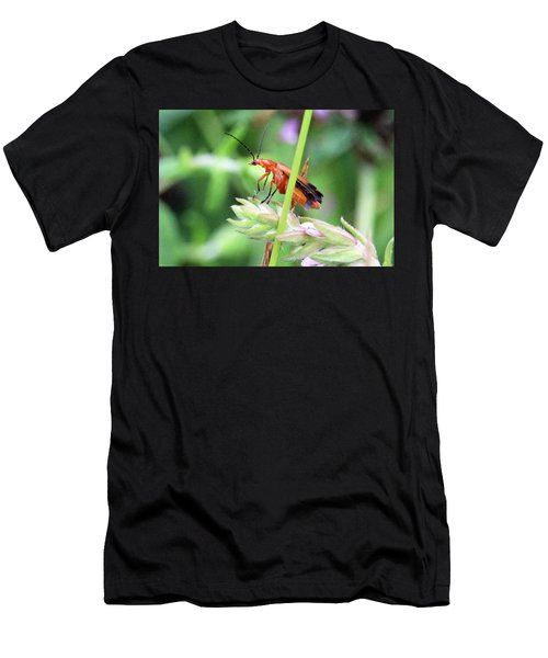 Insect Men's T-Shirt (Athletic Fit)