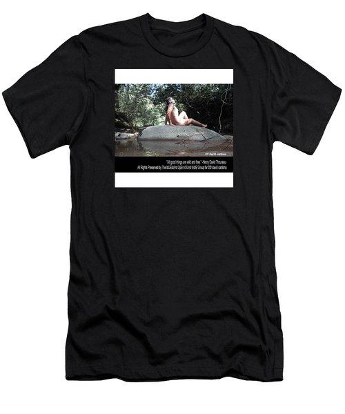 Into The Wild Men's T-Shirt (Slim Fit) by David Cardona