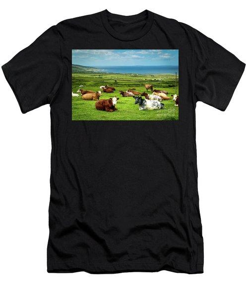 Ireland - Westcoast Men's T-Shirt (Athletic Fit)