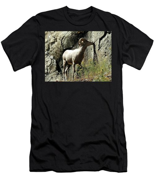 Irish Ram Men's T-Shirt (Athletic Fit)