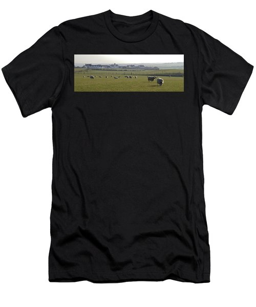 Irish Sheep Farm I Men's T-Shirt (Athletic Fit)