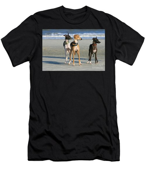 Italian Greyhounds On The Beach Men's T-Shirt (Athletic Fit)