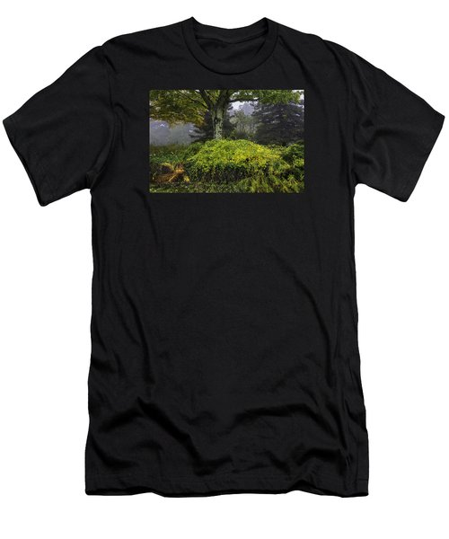 Ivy Garden Men's T-Shirt (Athletic Fit)