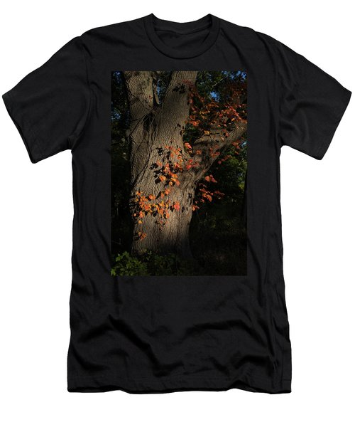 Ivy In The Fall Men's T-Shirt (Athletic Fit)