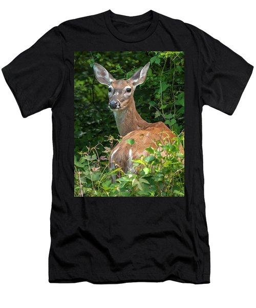 Ivy League Doe Men's T-Shirt (Athletic Fit)