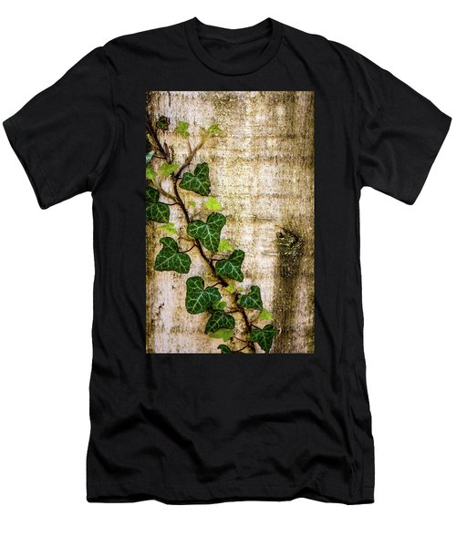 Ivy On The Fence Post Men's T-Shirt (Athletic Fit)