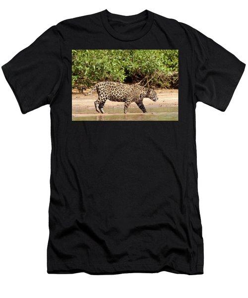 Jaguar Walking On A River Bank Men's T-Shirt (Athletic Fit)