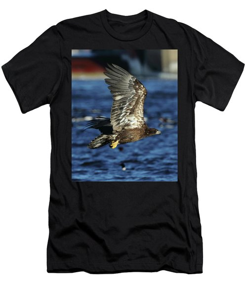 Men's T-Shirt (Slim Fit) featuring the photograph Juvenile Bald Eagle Over Water by Coby Cooper