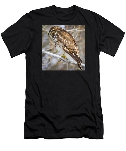 Juvenile Red-shouldered Hawk  Men's T-Shirt (Athletic Fit)