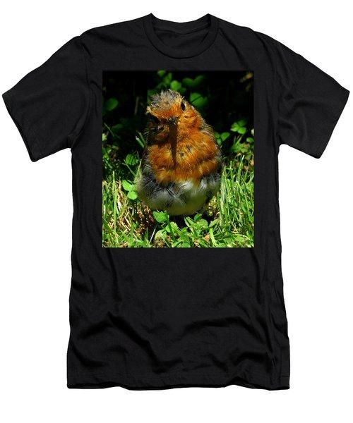Juvenile Robin 2 Men's T-Shirt (Athletic Fit)