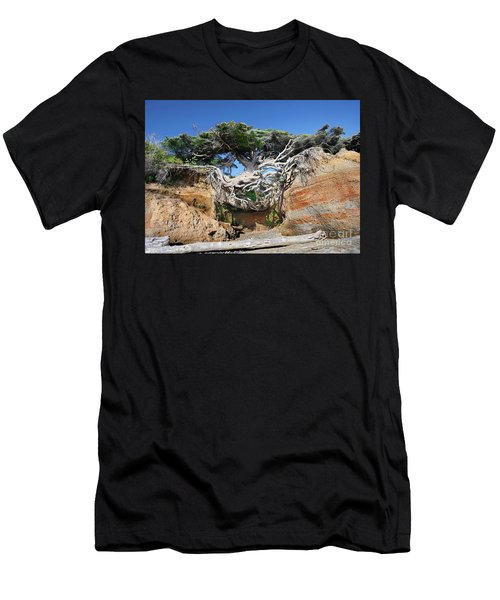 Kalaloch Tree Of Life Men's T-Shirt (Athletic Fit)