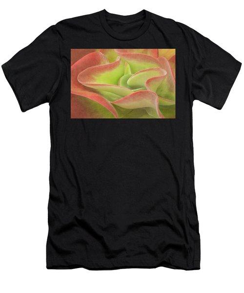 Kalanchoe Lucia The Beautiful Men's T-Shirt (Athletic Fit)