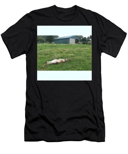 Kangaroo Men's T-Shirt (Athletic Fit)