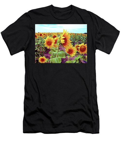 Kansas Sunflowers Men's T-Shirt (Athletic Fit)