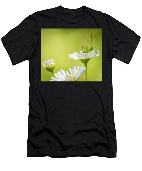 Katydid Men's T-Shirt (Athletic Fit)