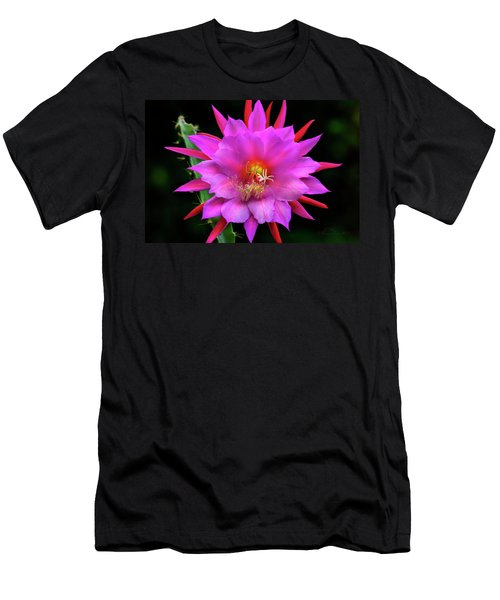 Kimnach's Pink Orchid Cactus Men's T-Shirt (Athletic Fit)