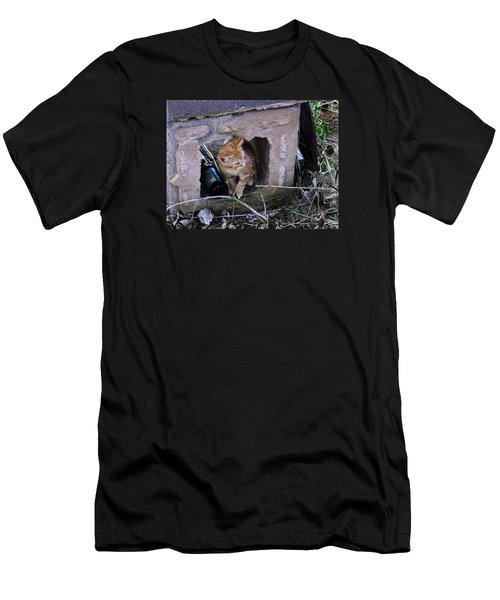 Kitten In The Junk Yard Men's T-Shirt (Slim Fit) by Larry Capra