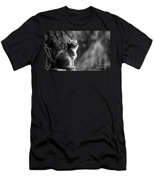 Kitten In The Tree Men's T-Shirt (Athletic Fit)