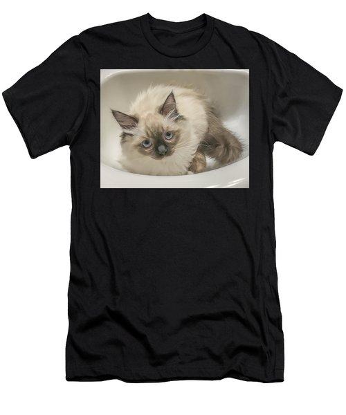 Kitty Blue Eyes Men's T-Shirt (Athletic Fit)
