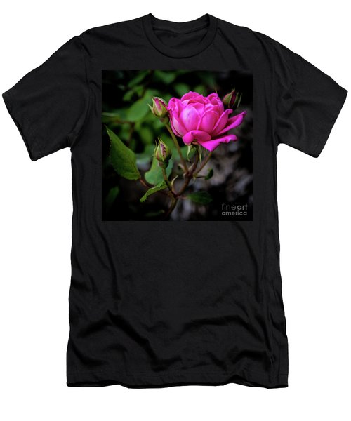 Knockout Rose Men's T-Shirt (Athletic Fit)