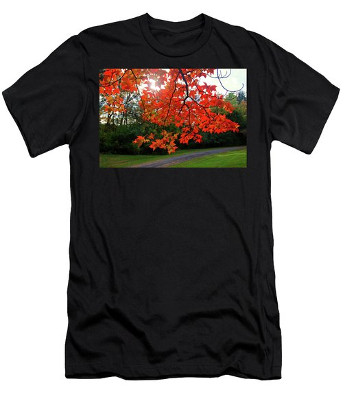 Knox Park 8444 Men's T-Shirt (Athletic Fit)