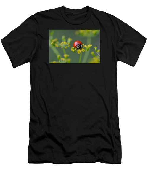Ladybug In Red Men's T-Shirt (Athletic Fit)