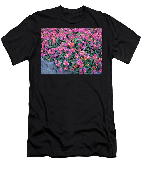 Lantana Men's T-Shirt (Athletic Fit)